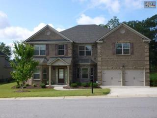 311  Lake Frances Drive  , West Columbia, SC 29170 (MLS #362936) :: Exit Real Estate Consultants