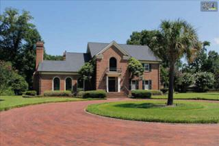 2635  Mineral Springs Road  , Lexington, SC 29072 (MLS #362953) :: Exit Real Estate Consultants