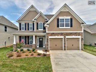 404  Eagle Claw Court  0007, Chapin, SC 29036 (MLS #362991) :: Exit Real Estate Consultants