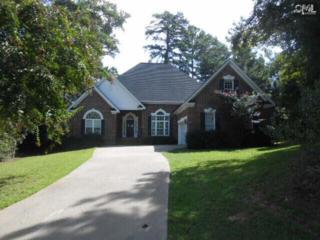 805  Island Point Lane  , Chapin, SC 29036 (MLS #363020) :: Exit Real Estate Consultants