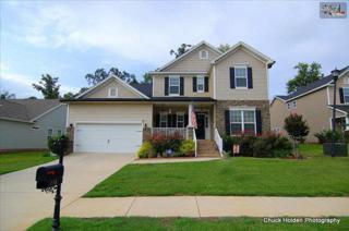 116  Kingship Drive  , Chapin, SC 29036 (MLS #363051) :: Exit Real Estate Consultants