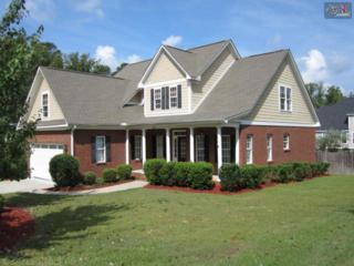 154  Ridge Top Road  , Lexington, SC 29072 (MLS #363163) :: Exit Real Estate Consultants