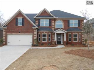 835  Village Well Court  50, Chapin, SC 29036 (MLS #363190) :: Exit Real Estate Consultants