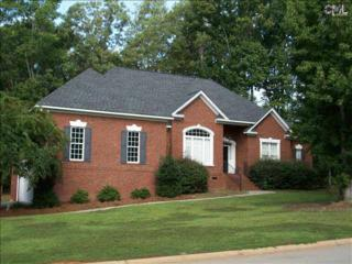 311  Lookout Hill Drive  , Chapin, SC 29036 (MLS #363250) :: Exit Real Estate Consultants