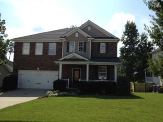 104  Plymouth Pass Way  , Lexington, SC 29072 (MLS #363263) :: Exit Real Estate Consultants