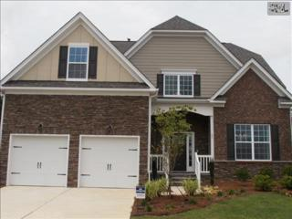 17  Downing Circle  31, Gilbert, SC 29054 (MLS #363287) :: Exit Real Estate Consultants