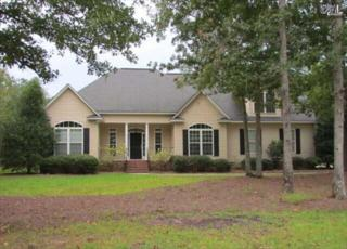 124  Osprey Nest Court  , Blythewood, SC 29016 (MLS #363330) :: Exit Real Estate Consultants