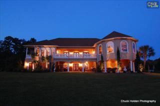 200  Montclair Road  , Irmo, SC 29063 (MLS #363365) :: Exit Real Estate Consultants