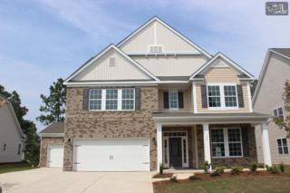 107  Kingship Drive  0146, Chapin, SC 29036 (MLS #363367) :: Exit Real Estate Consultants