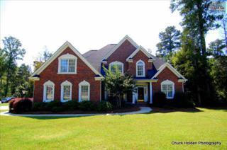 102  Cedar View Drive  , Irmo, SC 29063 (MLS #363397) :: Exit Real Estate Consultants
