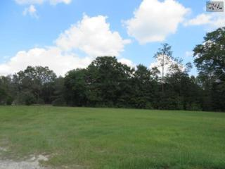 0  Dewey (S32-1850) Street  Lot A, Leesville, SC 29070 (MLS #363432) :: Exit Real Estate Consultants