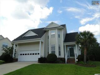 217  Blue Mountain Drive  , Irmo, SC 29063 (MLS #363450) :: Exit Real Estate Consultants