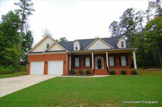 618  Golf Links Court  , Chapin, SC 29036 (MLS #363453) :: Exit Real Estate Consultants