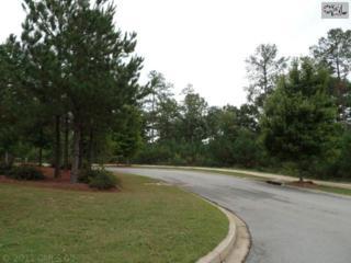 14  Wintersweet Circle  , Blythewood, SC 29016 (MLS #363526) :: Exit Real Estate Consultants