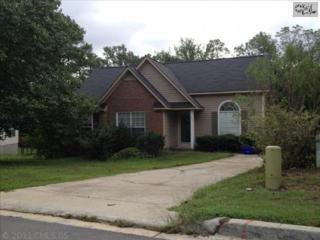253  Bradstone Road  , Irmo, SC 29063 (MLS #363619) :: Exit Real Estate Consultants