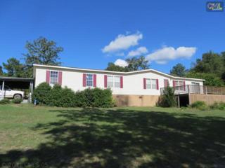 402  Haven Road  , Batesburg, SC 29006 (MLS #363820) :: Exit Real Estate Consultants