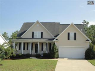 306  Anden Hall Drive  , Columbia, SC 29229 (MLS #364464) :: Exit Real Estate Consultants