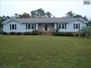 232  Beulah Church Road  , Gilbert, SC 29054 (MLS #364581) :: Exit Real Estate Consultants