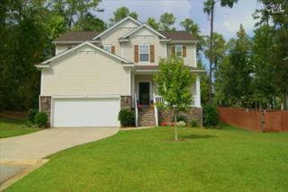108  Plymouth Pass Court  , Lexington, SC 29072 (MLS #364617) :: Exit Real Estate Consultants