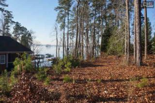 201  Old Summer Place  , Chapin, SC 29036 (MLS #364621) :: Century 21 | J. Bolos