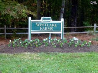 5  Hialeah Park Lane  , Blythewood, SC 29016 (MLS #364632) :: EXIT Real Estate Solutions