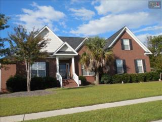 509  Grey Hawk Lane  , Blythewood, SC 29016 (MLS #364701) :: Exit Real Estate Consultants