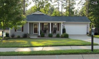 316  Foxport Drive  , Chapin, SC 29036 (MLS #364724) :: Exit Real Estate Consultants