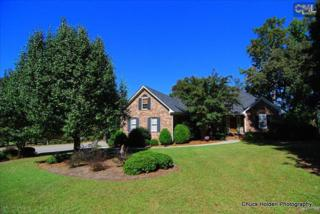 204  Lake Summit Drive  , Chapin, SC 29036 (MLS #364771) :: Exit Real Estate Consultants