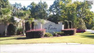 105  Hilton View Drive  , Chapin, SC 29036 (MLS #364787) :: Exit Real Estate Consultants