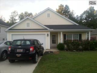 172  Pacific Avenue  , Chapin, SC 29036 (MLS #364790) :: Exit Real Estate Consultants