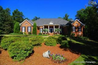204  Sterling Lake Court  , Lexington, SC 29072 (MLS #364870) :: Exit Real Estate Consultants
