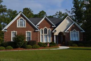 100  Tapp Pointe  , Chapin, SC 29036 (MLS #364997) :: Exit Real Estate Consultants