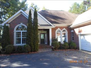 209  Mill Point Court  , Chapin, SC 29036 (MLS #365051) :: Exit Real Estate Consultants