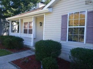 910  Hickory Glade Court  , Lexington, SC 29073 (MLS #365074) :: Exit Real Estate Consultants