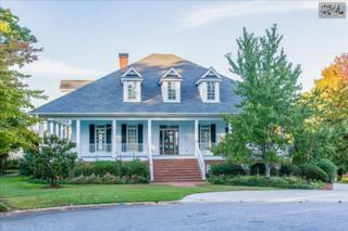 308  Dawn Island Court  , Chapin, SC 29036 (MLS #365083) :: Exit Real Estate Consultants