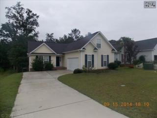 120  Allans Mill Drive  , Columbia, SC 29223 (MLS #365104) :: Exit Real Estate Consultants