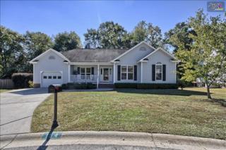 154  Heartwood Drive  , Lexington, SC 29073 (MLS #365117) :: Exit Real Estate Consultants