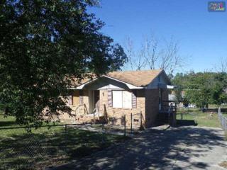 2021  Capital View Drive  , Gaston, SC 29063 (MLS #365151) :: Exit Real Estate Consultants