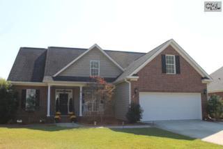 119  Marissa Lane  , Lexington, SC 29072 (MLS #365291) :: Exit Real Estate Consultants
