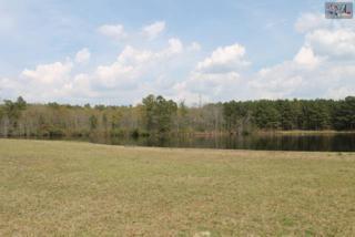 110  J Rufus Road  , Lexington, SC 29073 (MLS #365399) :: Exit Real Estate Consultants
