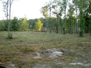 3197  Deer Run Road  , Ridgeway, SC 29130 (MLS #365463) :: Exit Real Estate Consultants