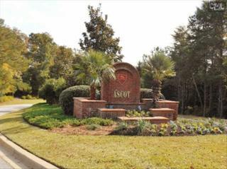 237  Laurent Way  , Irmo, SC 29063 (MLS #365781) :: Exit Real Estate Consultants