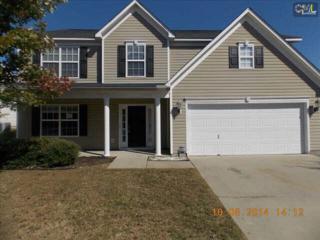 1028  Coralbean Way  , Columbia, SC 29229 (MLS #365883) :: Exit Real Estate Consultants