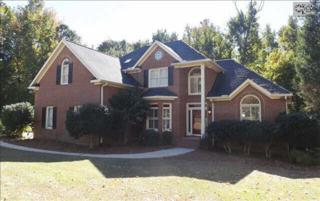 323  Poindexter Lane  , Lexington, SC 29072 (MLS #365933) :: Exit Real Estate Consultants