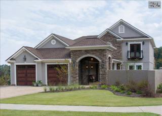 135  Old Woodlands Boulevard  , Lexington, SC 29207 (MLS #366153) :: Exit Real Estate Consultants
