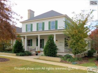 341  River Club Road  , Lexington, SC 29072 (MLS #366264) :: Exit Real Estate Consultants
