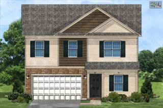 616  Colony Lakes Drive  , Lexington, SC 29073 (MLS #366495) :: Exit Real Estate Consultants