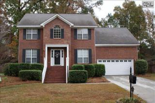 115  Holly Creek Drive  , Irmo, SC 29063 (MLS #366539) :: Exit Real Estate Consultants