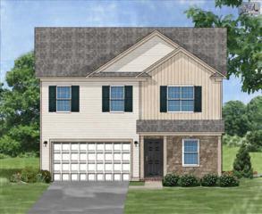 348  Blythe Creek Drive  Lot 72, Blythewood, SC 29016 (MLS #366548) :: Exit Real Estate Consultants
