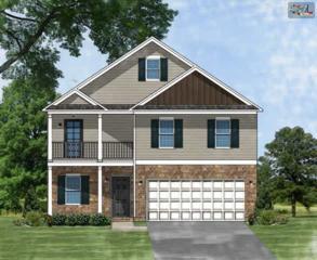 345  Blythe Creek Drive  Lot 134, Blythewood, SC 29016 (MLS #366561) :: Exit Real Estate Consultants